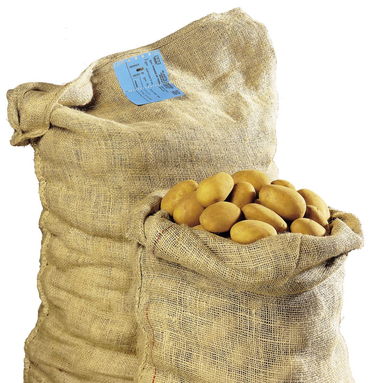 Plant de Bretagne sac de pomme de terre